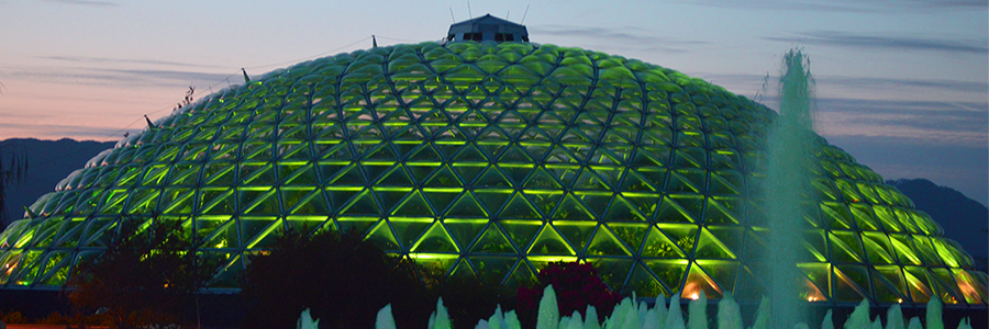Behind the Scenes of the Bloedel Conservatory Lighting Upgrade